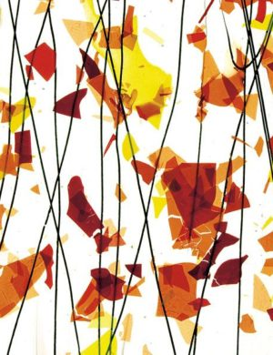 AUTUMN: Orange, Yellow, and Red on Clear Clear Base Collage